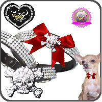strasshalsband_chihuahua_Nr-H04T22B__strasshalsbandchihuahua