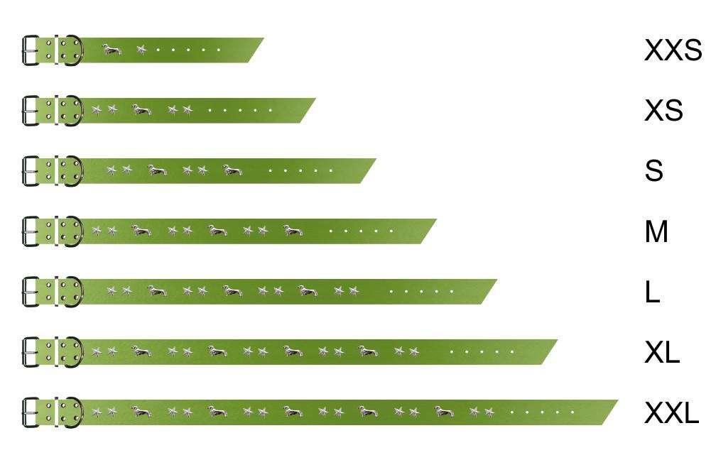 dackelhalsband-gruen-0-dackel-stern-ziernieten