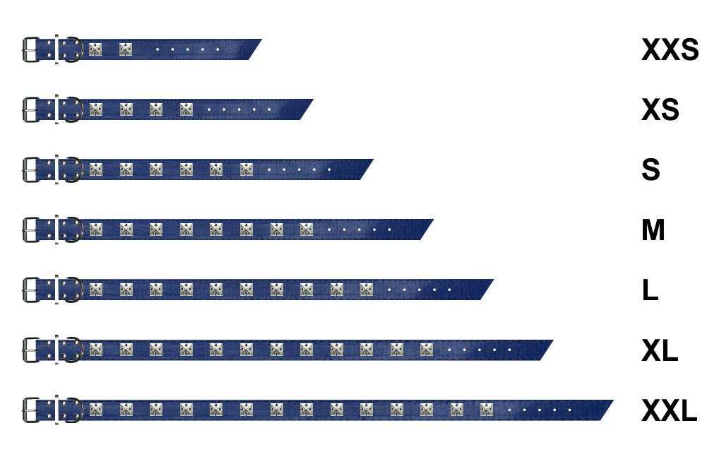 hundehalsband-mit-motivnieten-blau-0