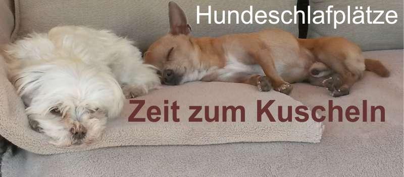 Angebot-tierwelt_hundebedarf_betten-koerbe[01