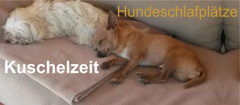 Angebot-tierwelt_hundebedarf_betten-koerbe[02