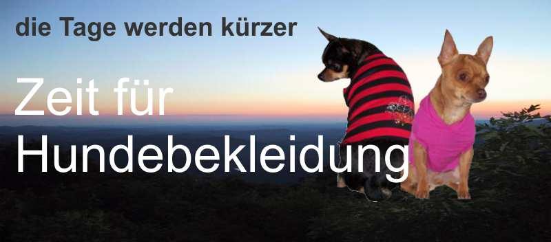 Angebot-tierwelt_hundebedarf_hundebekleidung[N01_S09_S10