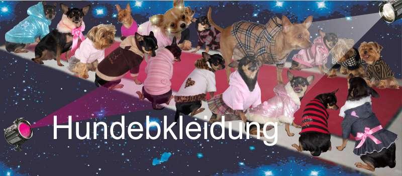 Angebot-tierwelt_hundebedarf_hundebekleidung[N02_S09_M10_S11_S12