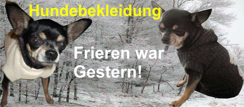 Angebot-tierwelt_hundebedarf_hundebekleidung[N03_S12_S11_S01_S02