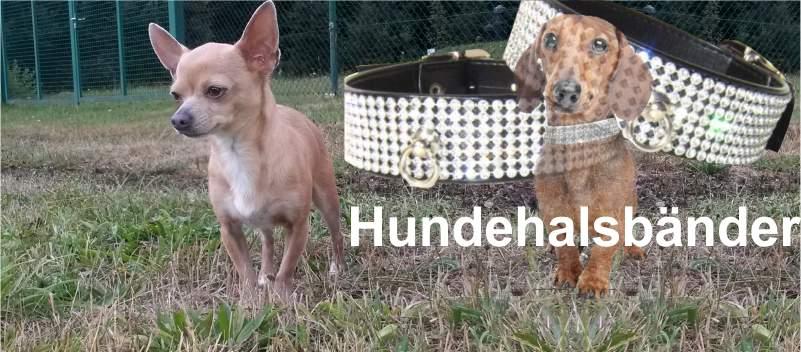 Angebot-tierwelt_hundebedarf_hundehalsbaender[N02